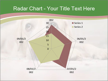 The dog PowerPoint Template - Slide 51