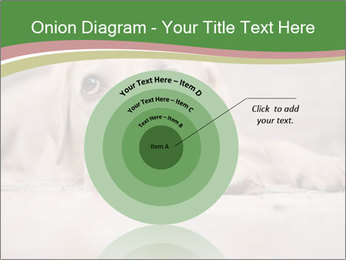 The dog PowerPoint Template - Slide 61