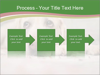 The dog PowerPoint Template - Slide 88