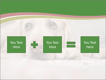 The dog PowerPoint Template - Slide 95