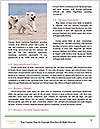 0000088085 Word Template - Page 4