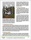 0000088093 Word Templates - Page 4