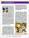 0000088099 Word Templates - Page 3