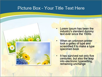 Yellow narcissuses PowerPoint Templates - Slide 20