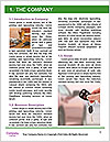 0000088101 Word Template - Page 3