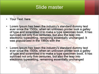Sirloin Steak PowerPoint Template - Slide 2