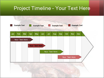Sirloin Steak PowerPoint Templates - Slide 25