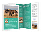 0000088111 Brochure Templates