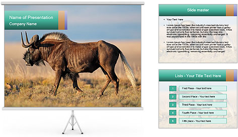 Male black wildebeest PowerPoint Template