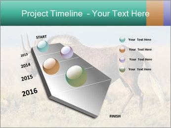 Male black wildebeest PowerPoint Template - Slide 26