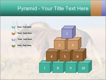 Male black wildebeest PowerPoint Template - Slide 31