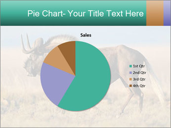 Male black wildebeest PowerPoint Template - Slide 36