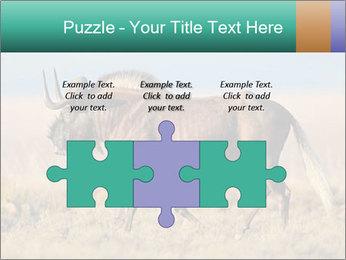Male black wildebeest PowerPoint Template - Slide 42