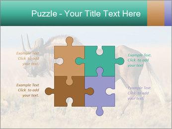 Male black wildebeest PowerPoint Template - Slide 43