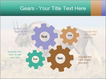 Male black wildebeest PowerPoint Template - Slide 47
