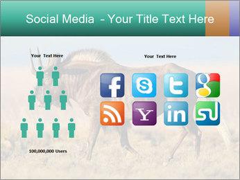 Male black wildebeest PowerPoint Template - Slide 5