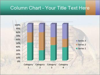 Male black wildebeest PowerPoint Template - Slide 50