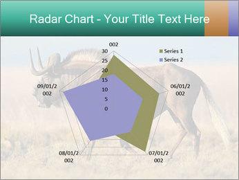 Male black wildebeest PowerPoint Template - Slide 51