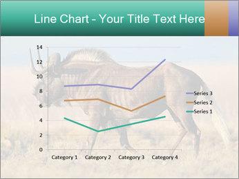 Male black wildebeest PowerPoint Template - Slide 54