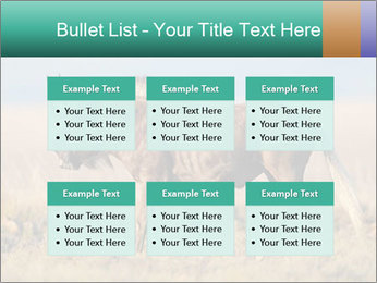 Male black wildebeest PowerPoint Template - Slide 56