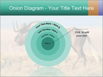 Male black wildebeest PowerPoint Template - Slide 61