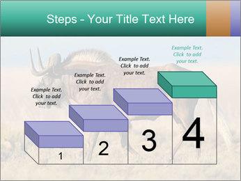 Male black wildebeest PowerPoint Template - Slide 64