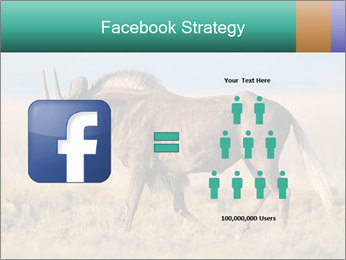 Male black wildebeest PowerPoint Template - Slide 7