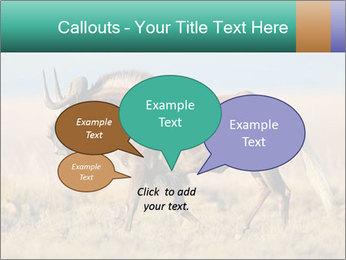 Male black wildebeest PowerPoint Template - Slide 73