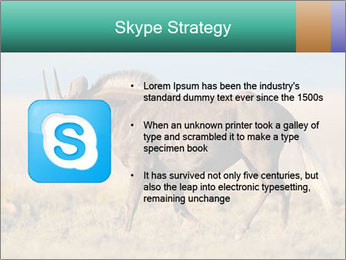 Male black wildebeest PowerPoint Template - Slide 8