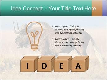 Male black wildebeest PowerPoint Template - Slide 80