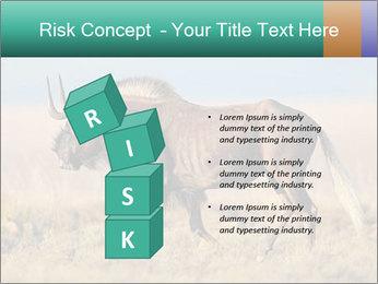 Male black wildebeest PowerPoint Template - Slide 81