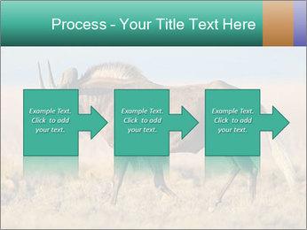 Male black wildebeest PowerPoint Template - Slide 88