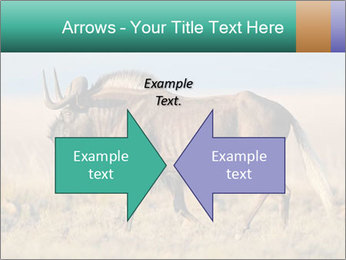 Male black wildebeest PowerPoint Template - Slide 90