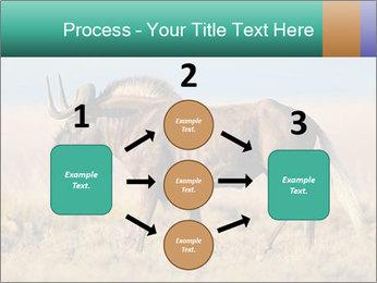 Male black wildebeest PowerPoint Template - Slide 92
