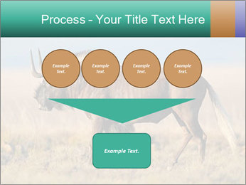 Male black wildebeest PowerPoint Template - Slide 93