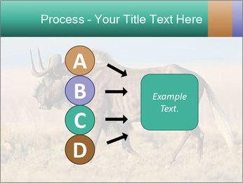 Male black wildebeest PowerPoint Template - Slide 94