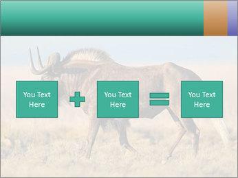 Male black wildebeest PowerPoint Template - Slide 95