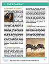 0000088111 Word Template - Page 3