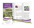 0000088112 Brochure Templates