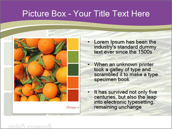A background closeup PowerPoint Template - Slide 13