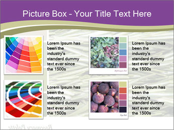 A background closeup PowerPoint Template - Slide 14