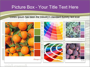A background closeup PowerPoint Template - Slide 19