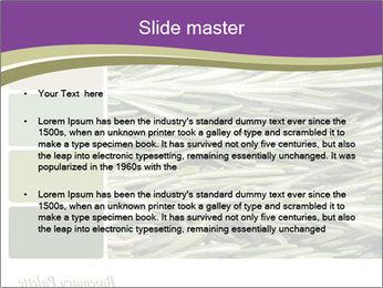 A background closeup PowerPoint Template - Slide 2