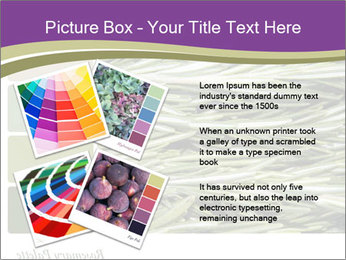 A background closeup PowerPoint Template - Slide 23