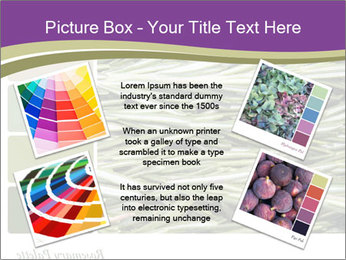 A background closeup PowerPoint Template - Slide 24