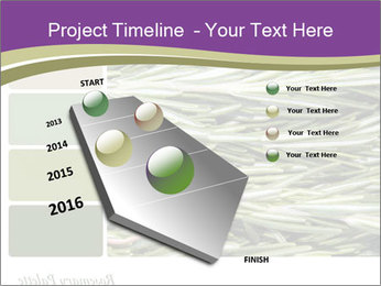 A background closeup PowerPoint Template - Slide 26