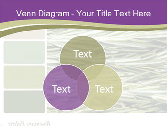 A background closeup PowerPoint Template - Slide 33