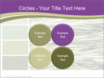 A background closeup PowerPoint Template - Slide 38