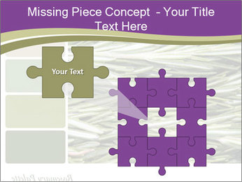 A background closeup PowerPoint Template - Slide 45
