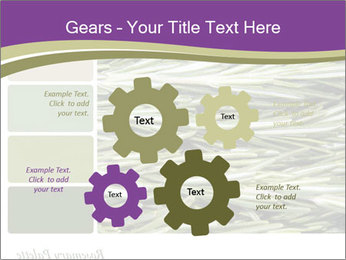 A background closeup PowerPoint Template - Slide 47